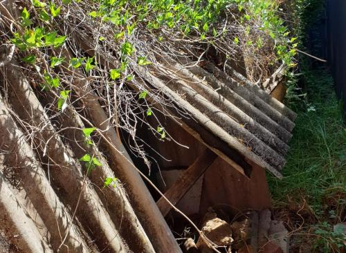 Collecting & Disposing Of Asbest Fence Materials